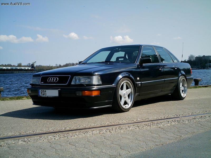 Interest For Audi V EVO Rear Spoiler WwwAudiVcom Audi V - Audi v8